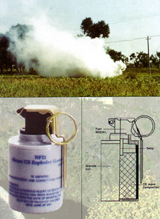 Nanxing Chemical General 48mm CS explosive (flashbang) grenade